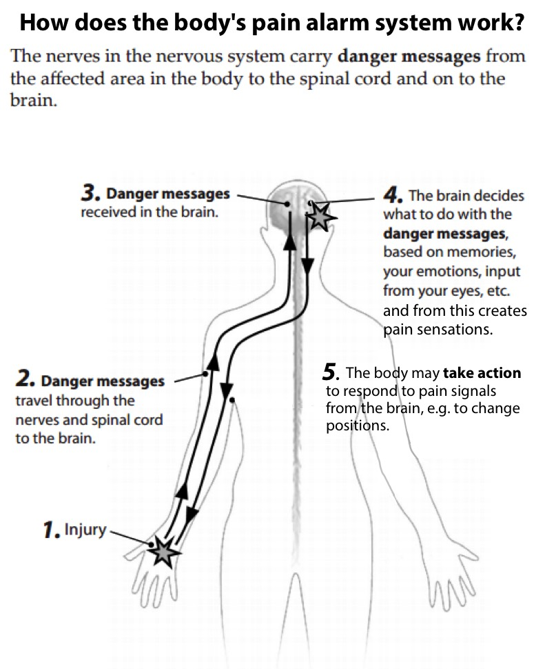 spinal cord injury pain pathway cascade